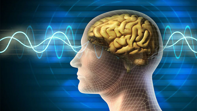 brain waves - evidence based mindfulness training